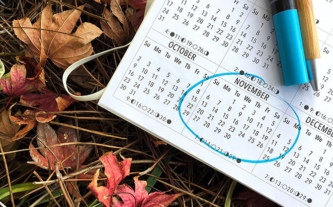 A planner with November circled, on a pile of leaves.